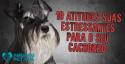 10 atitudes suas estressantes para o seu cachorro