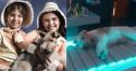 Atriz mirim fala que cachorro foi anestesiado para fazer cena de novela e dono rebate: 'Jamais deixaria que fosse sedado'