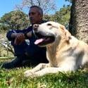 Cão que buscou vítimas na tragédia de Mariana, é aposentado em SC