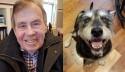 Último desejo de homem ao morrer é encontrar um lar para seu amado cão
