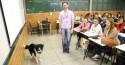 Professor leva cães para a sala e ensina cuidados e afeto aos alunos em MS