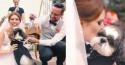 Cachorro rouba a cena em casamento e emociona convidados no RS (veja o vídeo)