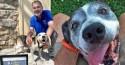 Idoso abre abrigo exclusivo para cachorros idosos que foram abandonados (veja o vídeo)