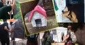 Estudantes se unem para fabricar casinhas para os animais de rua