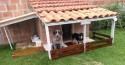 Cachorrinho que vivia na rua ganha 'mansão' com varanda e jardim em SP