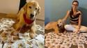 Cão terapeuta recebe mensagens de amor de crianças após ser diagnosticado com câncer