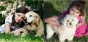 Foto: Reprodução / Pet Ponder