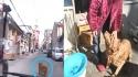 Golden Retriever conduzindo a ambulância até seu dono desmaiado. (Créditos: Reprodução/Pear Video)