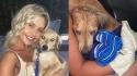 Casal que mora na Inglaterra, viaja de férias para Barbados, Caribe, encontra cachorro desnutrido e resolve adotá-lo. (Foto: Instagram/georgiaharding_x)