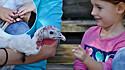 Criança faz amizade com peru que possui a mesma deficiência física. (Foto: Safe in Austin)