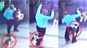 Gata ataca homem e cachorro para defender a sua ninhada. (Foto: Reproduçao/Newsflash)