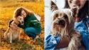 Principais tipos de câncer caninos, seus sintomas e como tratá-los. (Foto: Divulgação/Purina)