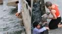 Jovem pula em alto-mar para salvar cachorrinho que estava se afogando na Austrália. (Foto: Newspix/Rex Features)