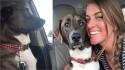 Cachorro fecha a cara para dona ao descobrir que irá ao dentista. (Foto: Reprodução Youtube/Bret Mortimer)