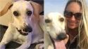 Cãozinho com rosto deformado é adotado. (Foto: Kennedy News and Media)