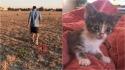 Sozinha em campo, gatinha corre atrás de casal na esperança de ser resgatada. (Foto: Instagram/fielda.thefieldcat)