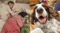 Filha registra pai dormindo na sala com o cão da família que está doente. (Foto: Facebook/Catherine Morris via Dogspotting Society)