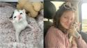 Única sobrevivente de ninhada, gatinha luta para viver e comove pela superação. (Foto: Instagram/fostermotherofkittens)