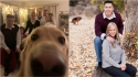 Confira sequência de fotos hilárias de cães que se intrometeram em fotos de família. (Foto: Divulgação/Bored Panda)