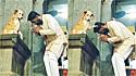 Cachorro cumprimenta e 'abençoa' fiéis na saída de templo indiano. (Foto: Reprodução Instagram/smalltobigtails)