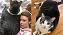Dona de gato obeso é julgada erroneamente pelas pessoas, pois o gato possui um hormônio do crescimento. (Foto: Caters News Agency)