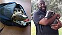 Homem encontra filhote de pit bull trancado em mochila na caçamba da sua picape.
