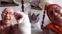 Gatos ajudam dona a manter bom humor durante tratamento contra câncer.
