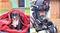 Cadelinha que estava fechada em mochila dentro de residência em chamas é salva.