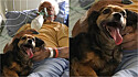 Idoso de 92 anos recebe última visita de sua amada cachorrinha antes de falecer.