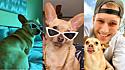 A cadela chihuahua, Gracie, e seu tutor, o americano Scott Hubbard.