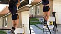 Cachorro ajuda dona empurrando cadeira para ela se apoiar durante treino.