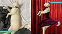 Mulher publica foto do seu gato em grupo do Facebook e pede para os integrantes fazerem uma montagem dele como se fosse uma bailarina. As imagens são hilárias.