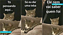 Em vídeos hilários da internet, Ednardo Corsino, administrador das páginas do Instagram Lambe Patas e Cheira Toba, cria diálogos divertidíssimos entre animais.