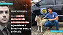 Bruno Lima propõe Projeto de Lei que proíbe agressão no adestramento de cães.