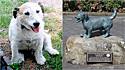 O cachorrinho George deu a vida para salvar 5 crianças de ataques de dois pit bulls.