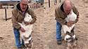 Um ano longe da pastora-australiana surda e muda da filha, homem tem reencontro emocionante.