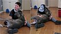 Tyler, de 10 anos, se emociona ao rever o seu pit bull que ficou desaparecido por dois meses.