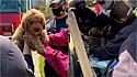 Bombeiros do Texas são acionados para resgatar filhote de goldendoodle que ficou com a cabeça presa em um cano.