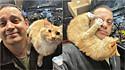 Gato invade a garagem do fotógrafo Steve Hamel, enquanto ele consertava o seu jipe e a presença do felino rende fotos hilárias.