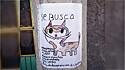 O desenho da gatinha retratada por um menino de Mixquiahuala, México.