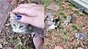 A gatinha estava sendo alimentada pela norte-americana Shea Prior e quando sentiu confiança nela, apresentou seus filhotes.