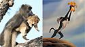 Babuíno e filhote de leão recriam cena do filme Rei Leão, no Parque Nacional Kruger, na África do Sul.