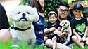 Cão reencontra família depois de ficar desaparecido por dois anos.