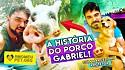 O porco Gabriel foi acolhido pelo protetor Marcelinho ainda filhote e viveu sete anos sob os seus cuidados.