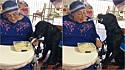 Cadela auxilia mulher tetraplégica a realizar atividades como pintar e se alimentar.