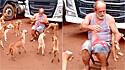 Caminhoneiro alimenta cães de rua.