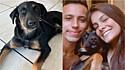 Casal adotada vira-lata que encontraram nas ruas do Rio de Janeiro em uma madrugada.