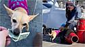 Cachorro encanta público ao ajudar o seu dono, artista de rua, a recolher as gorjetas.