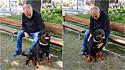 Rottweiler alegra homem desconhecido entristecido por ter perdido seu cachorro.