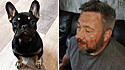 Homem defende seu cachorro de ser roubado por ladrões.